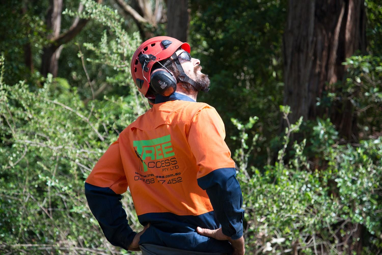 Tree Access Pty Ltd