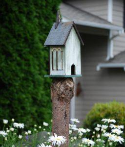 tree stump bird house