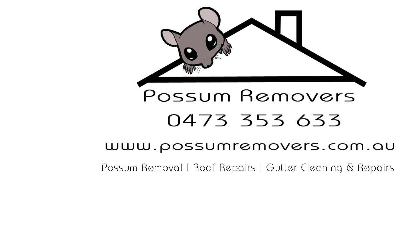 Possum Removers