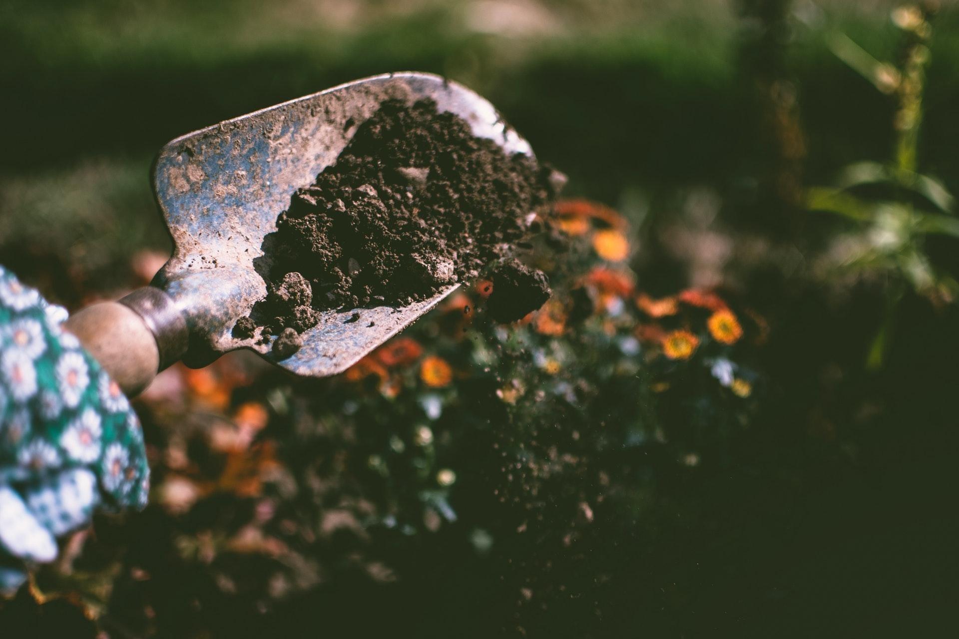 Pimp your garden