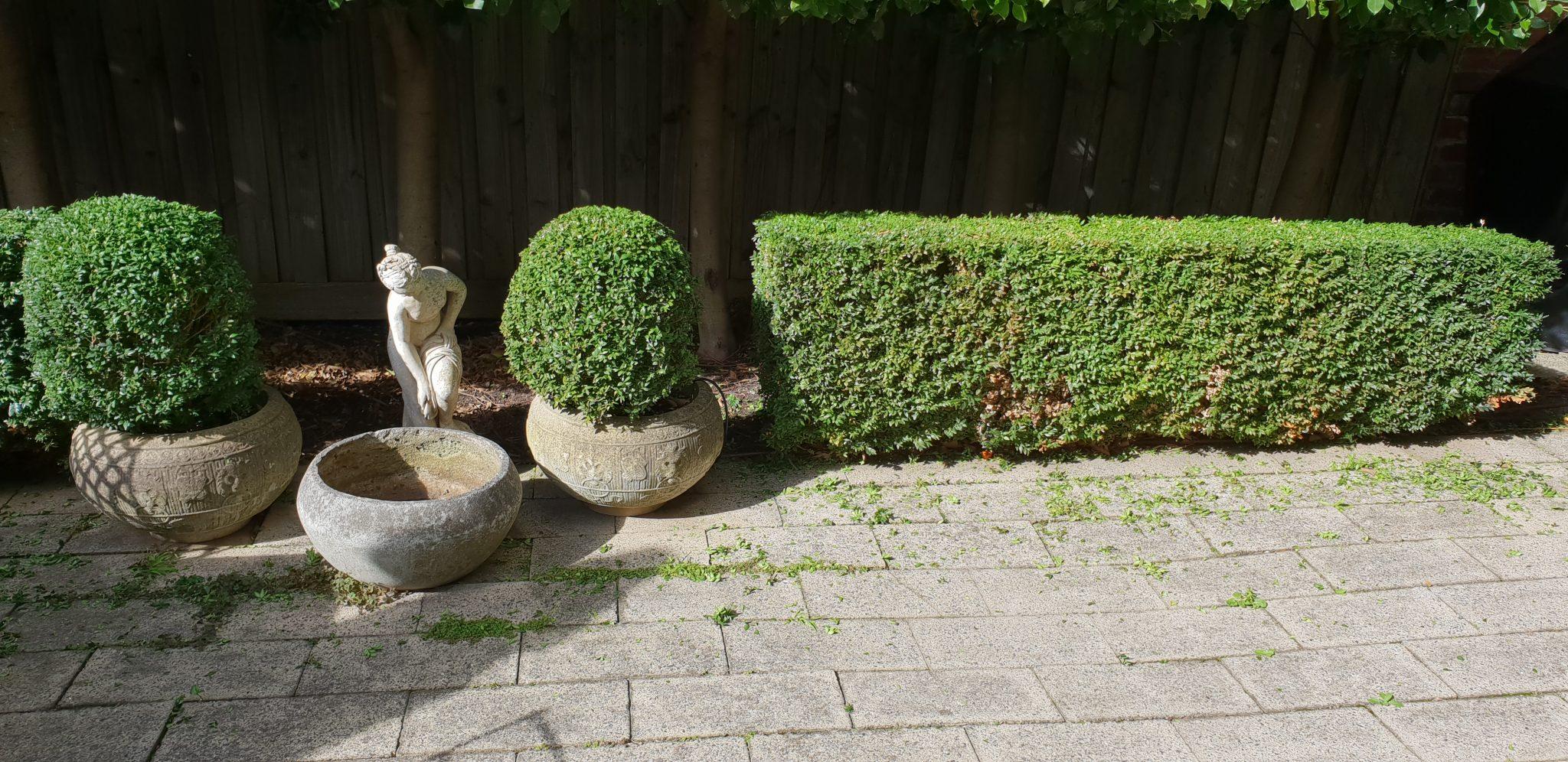 Ben Rickard Horticultural Service