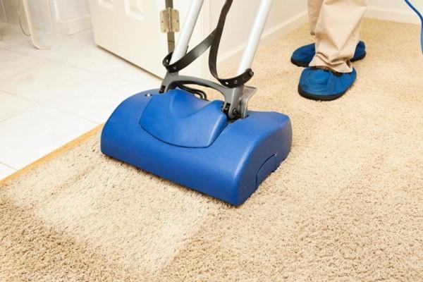 Squeaky Clean Carpet Brighton