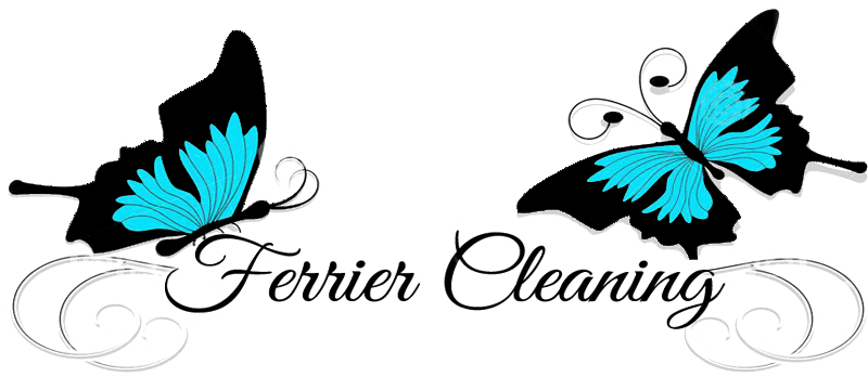 Ferrier Cleaning Review Ratings Amp Information