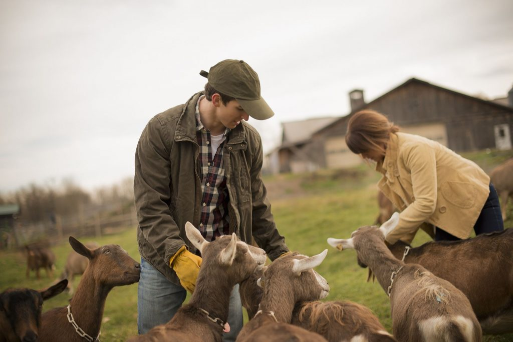hobby farm animals to raise