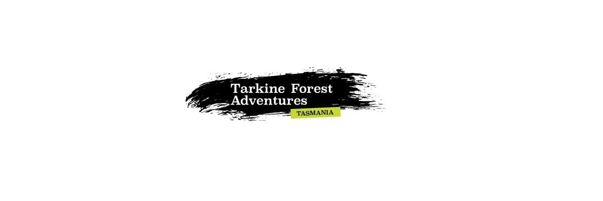 Tarkine Forest Adventures at Dismal Swamp