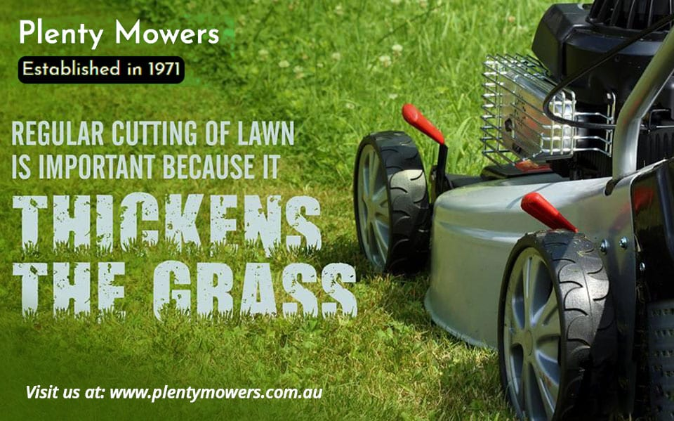 Plenty Mowers