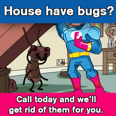 Mr. Flikem Pest Control