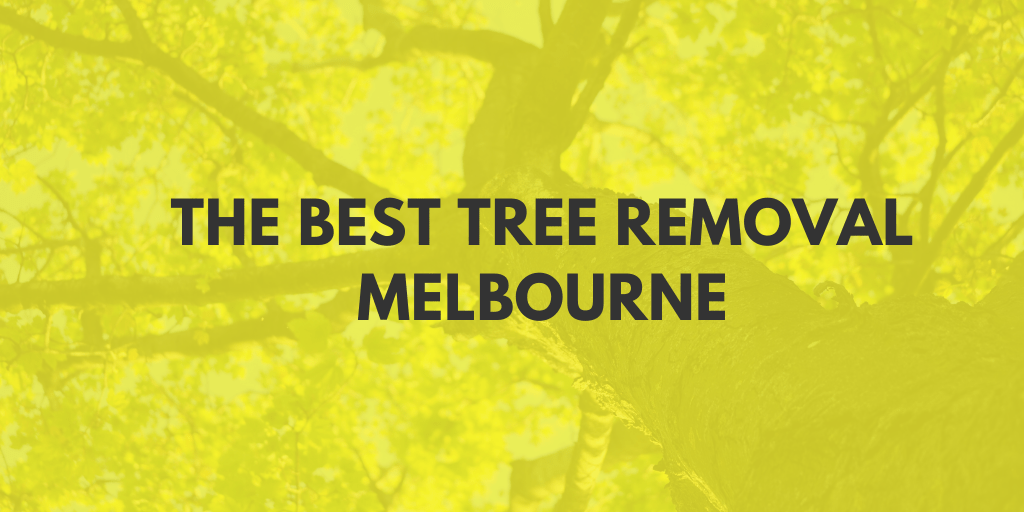 best tree removal melbourne banner