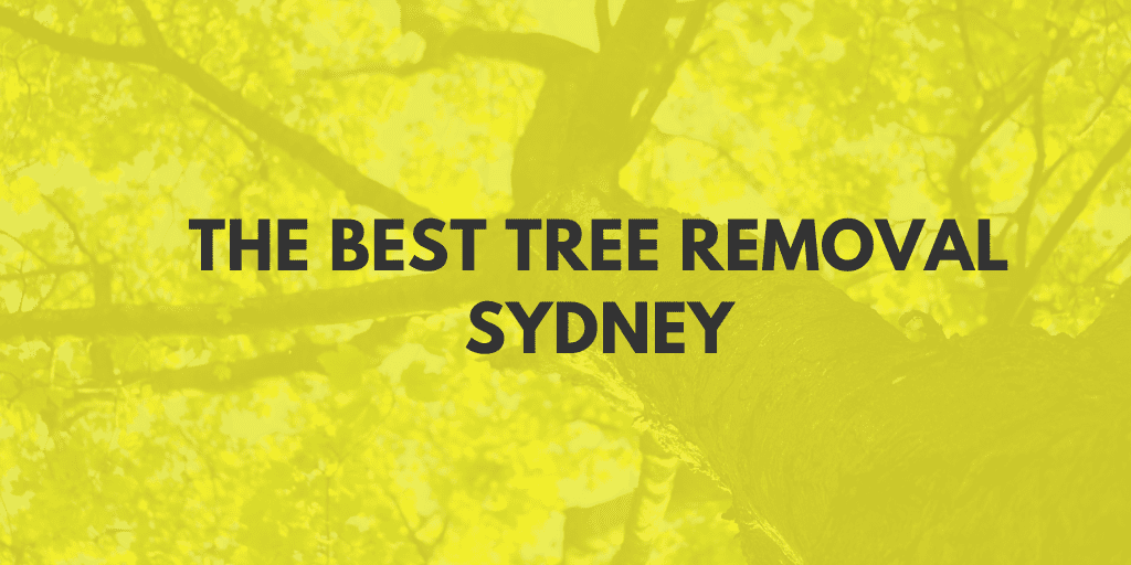 best tree removal sydney banner