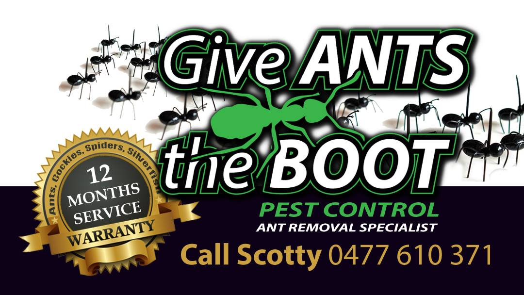 Give Ants The Boot Pest Control